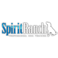 Spirit Ranch Dog Training